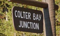 colter bay01